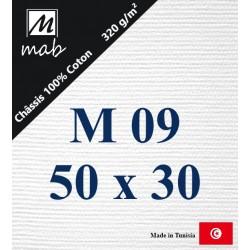 Châssis Entoilé Format Marine M09 : 50x33